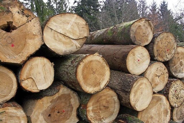 Holz gefragt wie selten