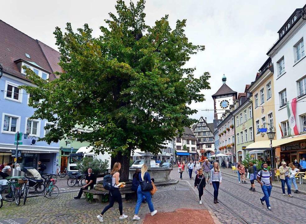 Die Linde in Oberlinden, wieder ergrünt    Foto: Michael Bamberger
