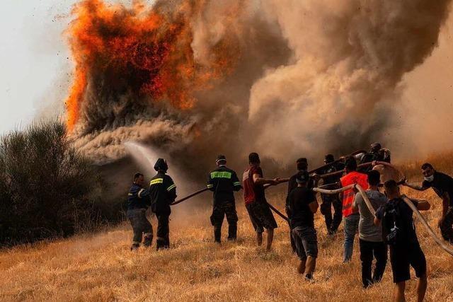 Waldbrände in Südeuropa - Deutschland schickt Hilfe nach Griechenland