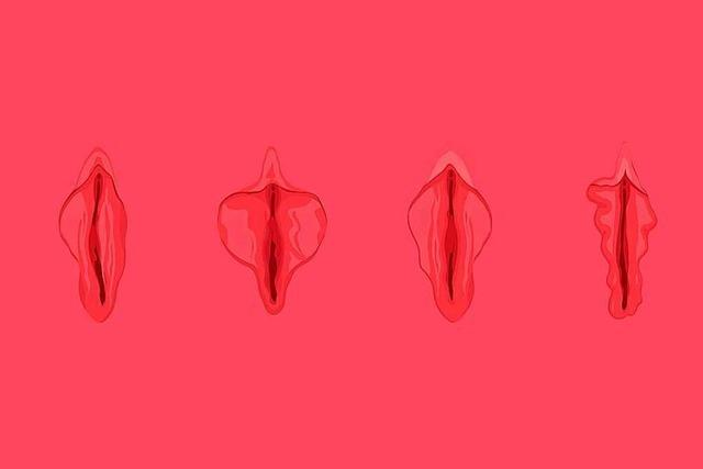 Das Ende der Scham: Warum die Vulva kein Tabu sein sollte