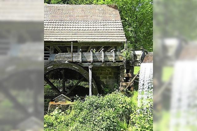 Die historische Gallus-Säge in Oberharmersbach wird zu Schauzwecken in Betrieb genommen