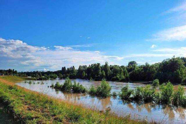 Beim Rheinhochwasser 1910 wuchs der Rhein zu einem reißenden Fluss heran