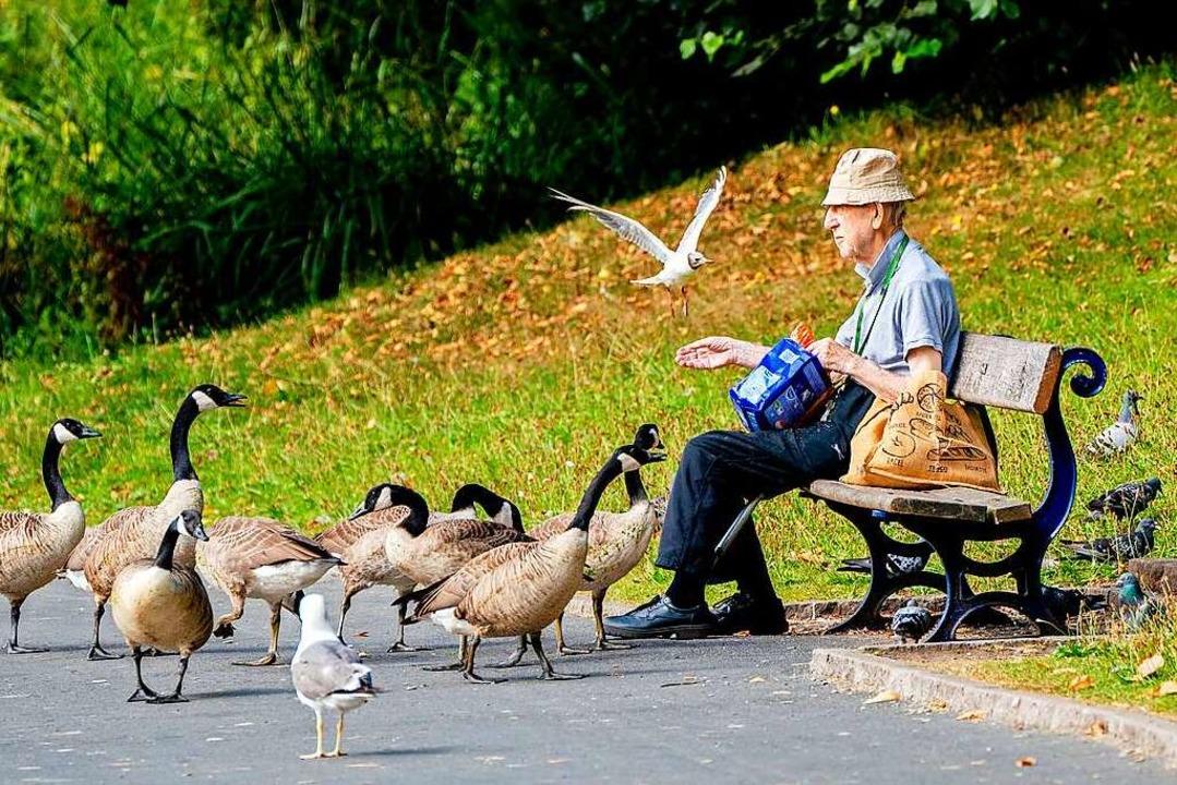 Auch wenn Tiere eine schöne Beschäftig...üpft, muss im Alter nicht allein sein.  | Foto: Peter Byrne (dpa)
