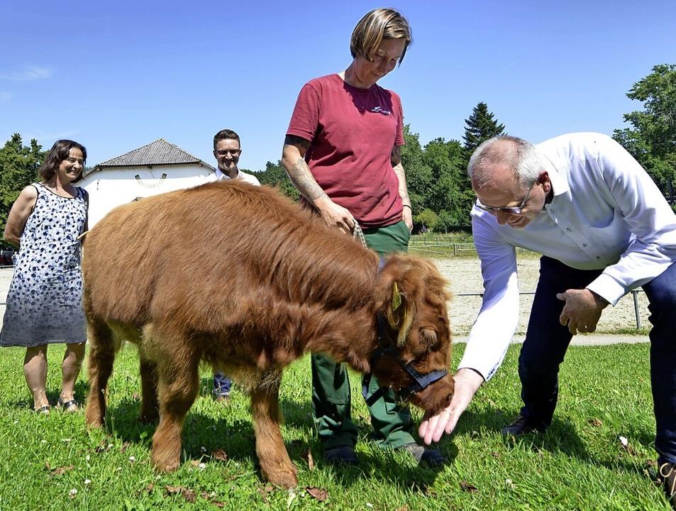 Hochlandkalb Toni stand im Mittelpunkt... BGV sowie Tierpflegerin Regine Köster    Foto: Michael Bamberger