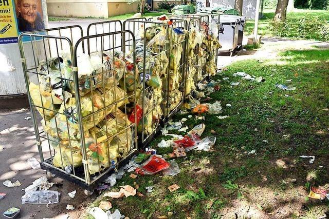 Krähen, die Gelbe Säcke zerpflücken, sind ein Problem in Freiburg