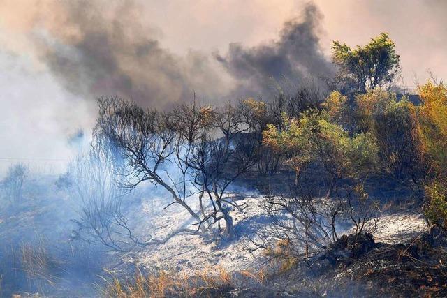 48,8 Grad auf Sizilien – Hitze und Brände nehmen kein Ende