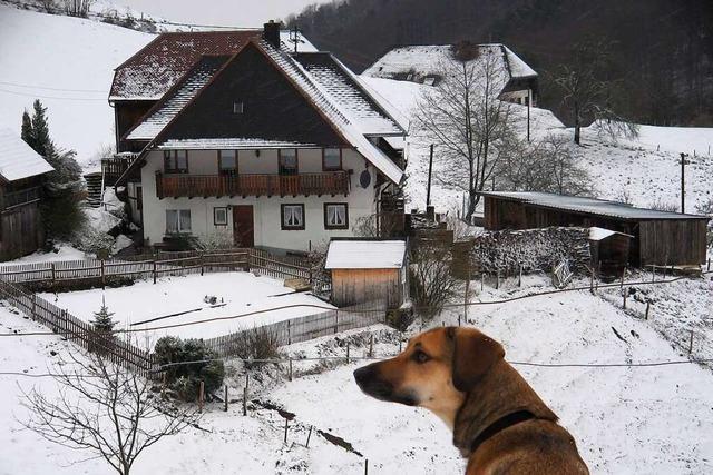 Eine Winterwaldwanderung mit Einkehr in der Berggaststätte