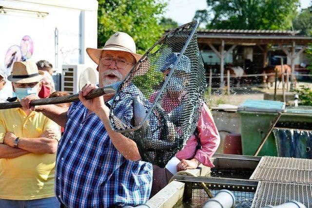 Tipps und Tricks zum Kaufen und Kochen von Fisch