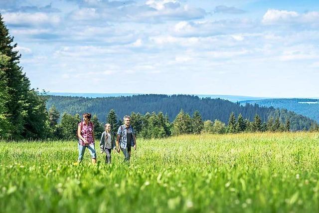Tourismusbranche im Schwarzwald hofft auf sonnigen Herbst