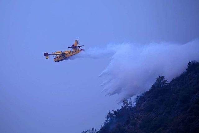 Spanien hat eine professionell organisierte Waldbrandbekämpfung