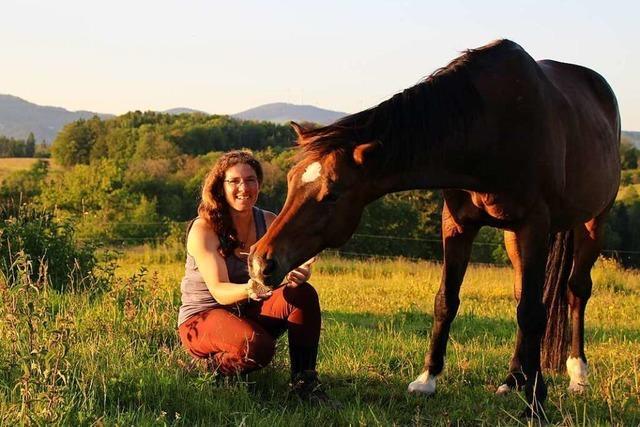 Die 33 Pferde vom Hargethof in Dossenbach müssen umziehen – aber wohin?
