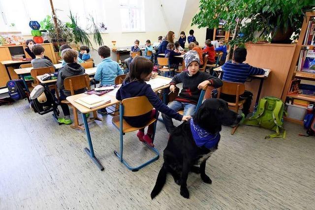 Die zweigleisige Schulkinderbetreuung in Freiburg-Stühlinger endet