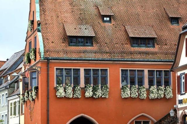 Die Chrysanthema in Lahr steht wieder auf der Kippe