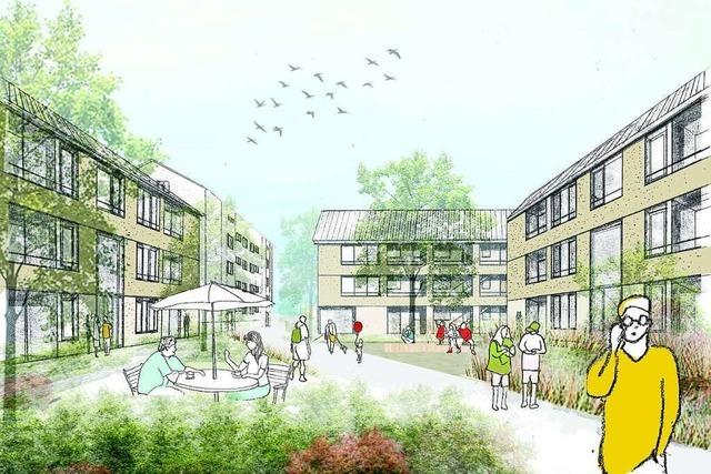 Wohnbau Lörrach investiert Millionen in bezahlbare Mietwohungen