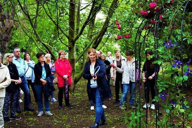 Seit 25 Jahren wandeln die Weiler Stadtführer auf den Spuren der Geschichte