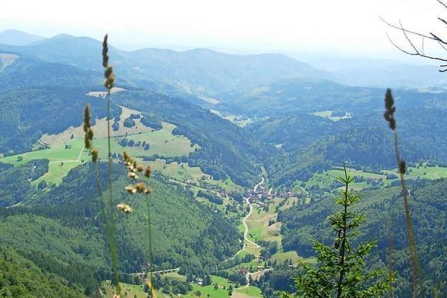Tourismus im Kreis Lörrach bleibt noch hinter den Erwartungen