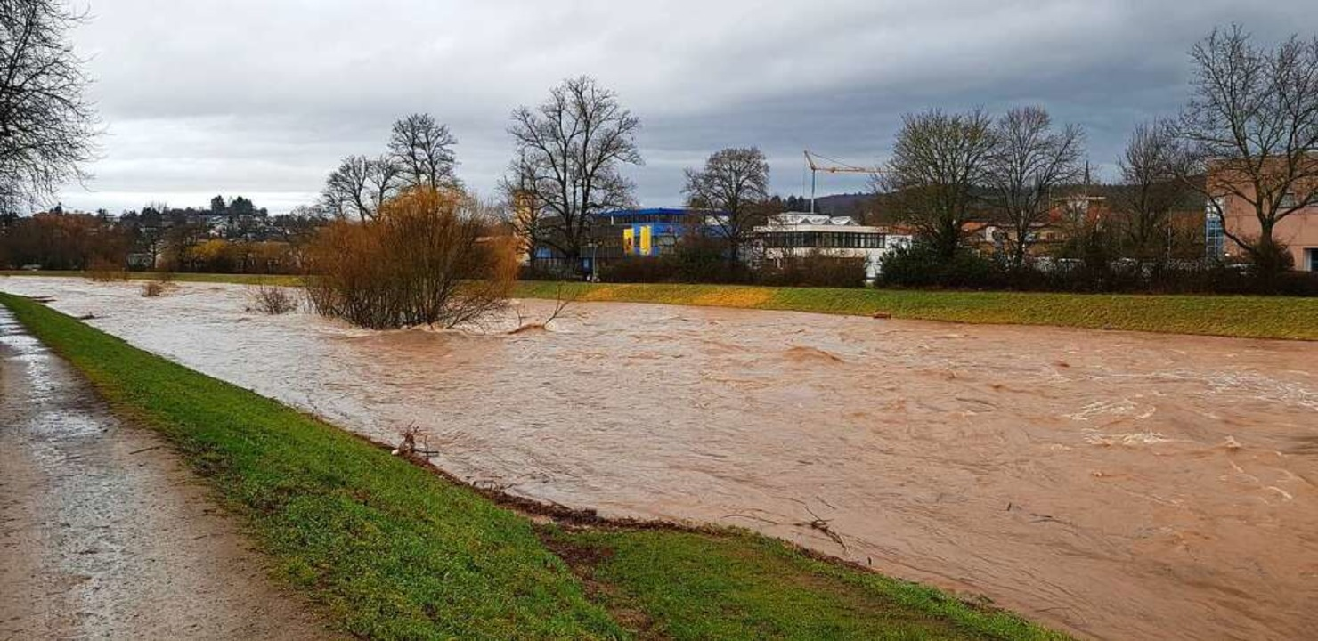 Zum reißenden Fluss werden kann die El...  bei Emmendingen am 4. Februar 2020.   | Foto: Gerhard Walser