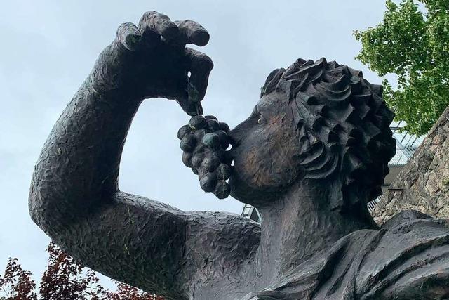 Ortenauer Winzer bedauern Absage des Weinfestes in Offenburg