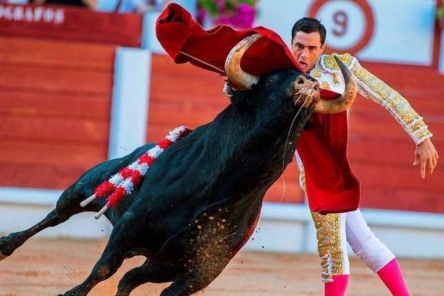 Spanische Bürgermeisterin bietet den Toreros die Stirn