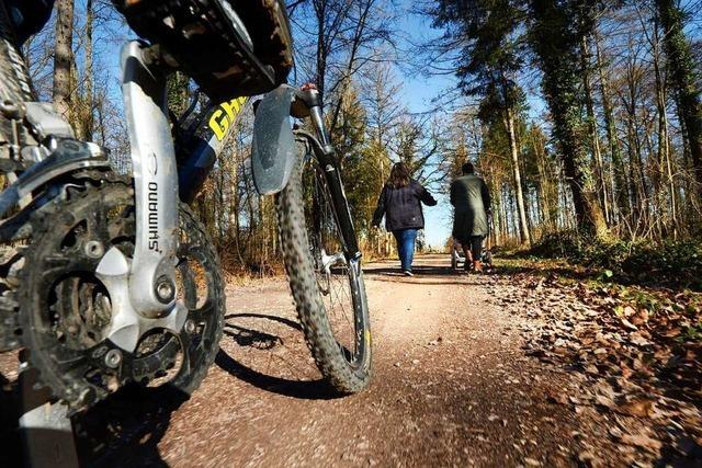 Förster wünschen mehr Rücksicht von Waldbesuchern