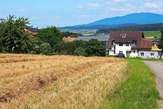 Warum es mit dem Baugebiet in Huttingen so lange dauert