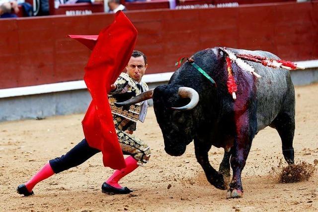Was ist Stierkampf?