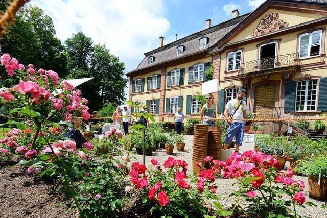 Beim Ebneter Kultursommer gibt es 17 Veranstaltung rund ums Schloss