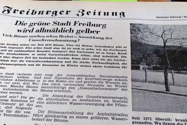 Kranke Bäume waren im August 1971 BZ-Thema