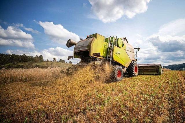 Bauern im Südwesten ziehen enttäuschende Erntebilanz