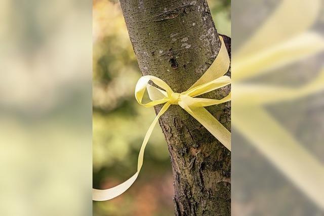 Gelbe Bänder für Obstbäume
