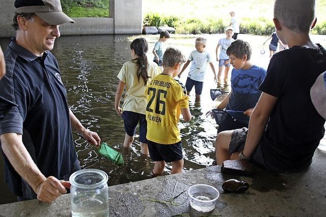 Kinder erforschen die Tiere im Wasser