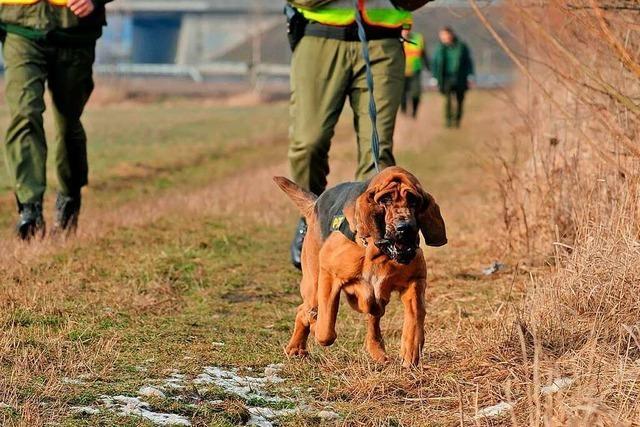 Polizei suchte nach vermisstem Mann in Nollingen