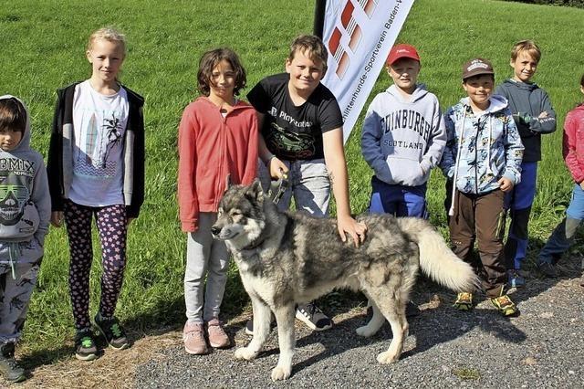 Kinder lernen über Hunde