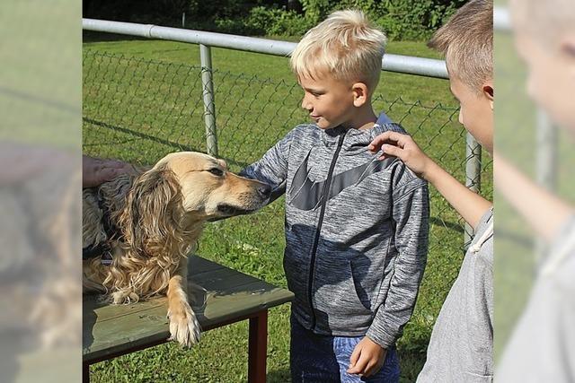 Kinder zeigen Interesse an Tieren und am Sport