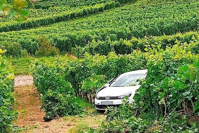 Binzen leidet zunehmend unter Party-Müll – Foto zeigt Auto im Weinberg