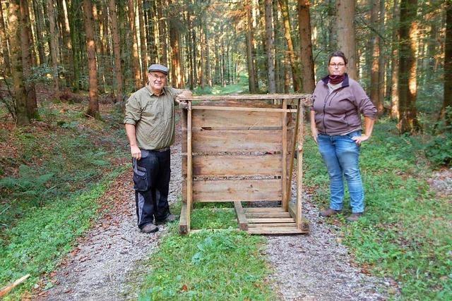 Randalierer beeinträchtigen im Wald bei Minseln die Sicherheit