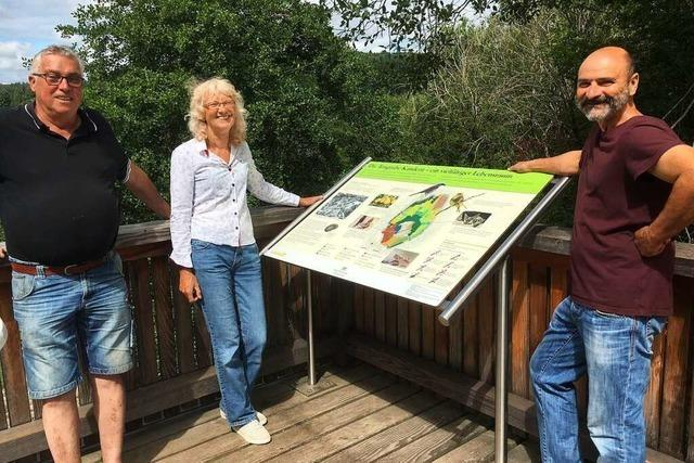Tongrube Ost in Kandern lockt Naturfreunde mit neuer Aussichtsplattform an