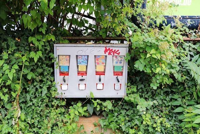 Geld rein, Ware raus: Für was es in Freiburg alles Automaten gibt