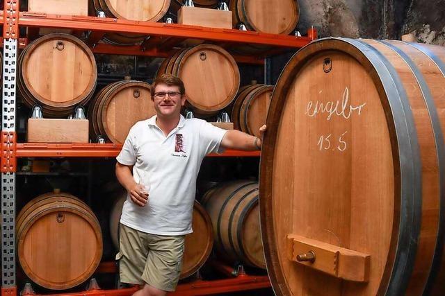 Weingut in Vögisheim lagert Tropfen in Fässern aus eigenem Holz