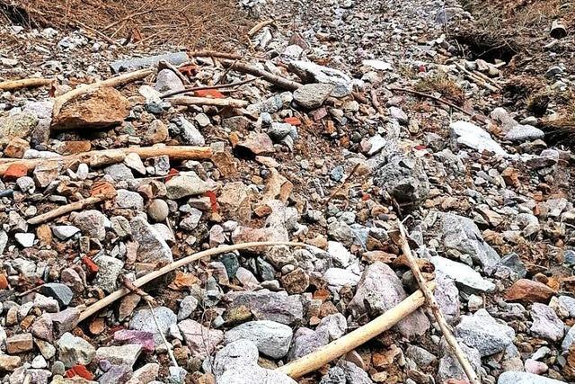 Staatsanwaltschaft ermittelt wegen Umwelt-Straftaten im Kleinen Wiesental