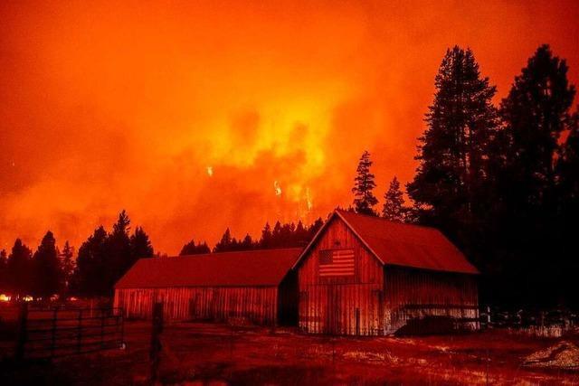 Waldbrände in Kalifornien bedrohen Ausflugsgebiet Lake Tahoe