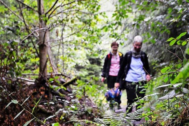 Bergwacht appelliert an verirrte Wanderer, rechtzeitig den Notruf zu wählen