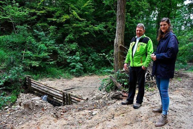 Moderne Technik misst die Pegelstände am Ruschbach in Grenzach-Wyhlen