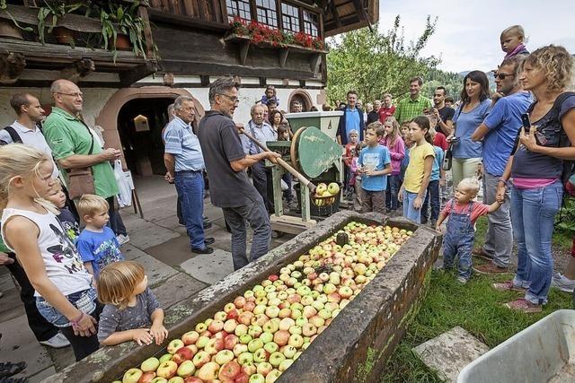 Das Schwarzwälder Freilichtmuseum Vogtsbauernhof stimmt auf den Frühherbst ein