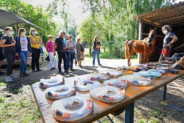 Einblick in die Arbeit als Fußpfleger für Pferde