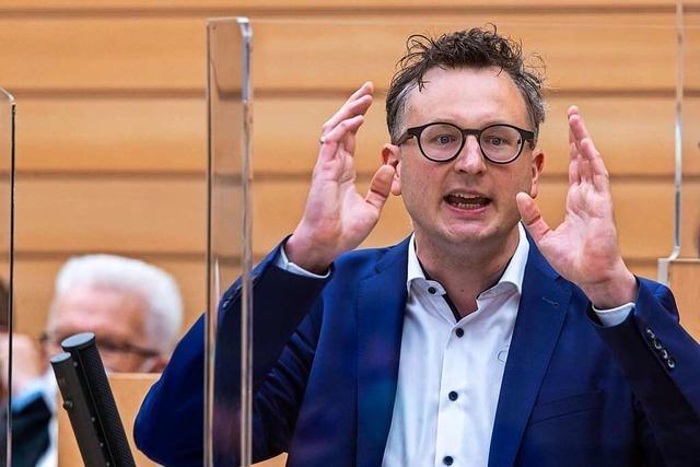 Grünen-Chef im Landtag: