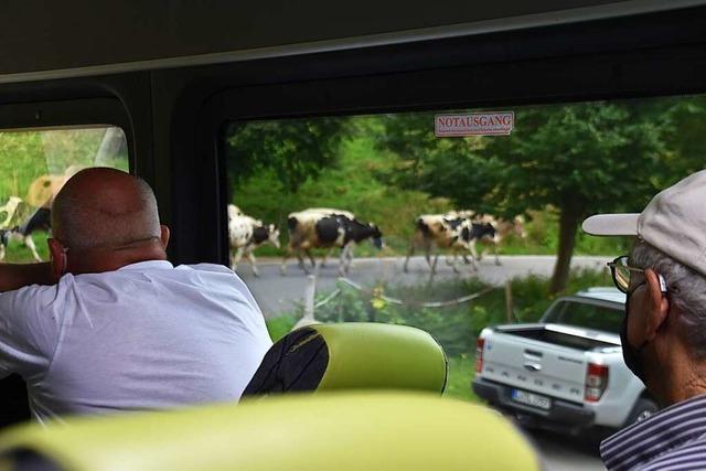 Die IG Pro Schiene wirbt auf einer Bustour für mehr Nahverkehr im Wiesental