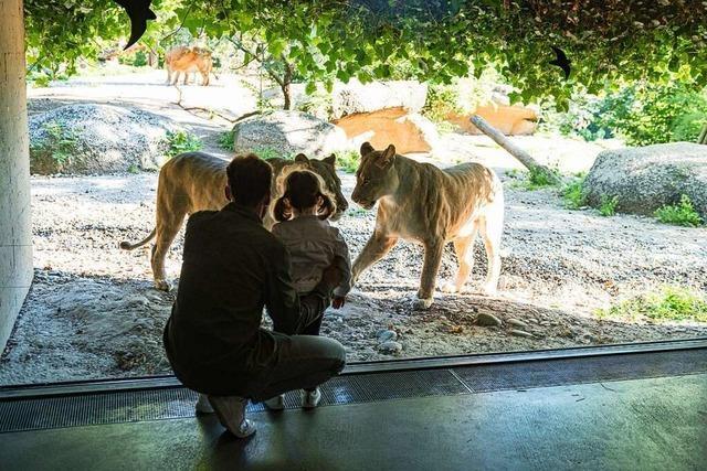 Tierhäuser im Zoo Basel bilden ganz verschiedene Lebensräume ab