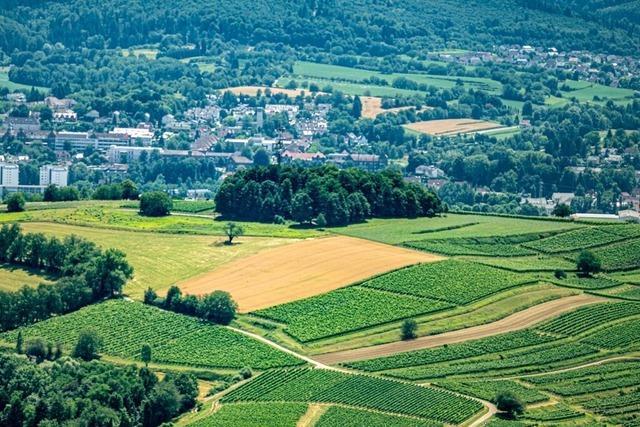 Einer der Lieblingsplätze von Landrat Frank Scherer ist der Schutterlindenberg in Lahr