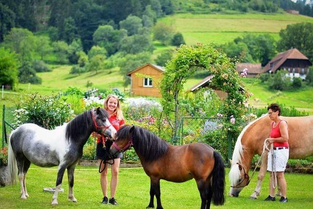 Nicole Linder baut im Dreisamtal eine Longierhalle für ihr Angebot der pferdegestützten Pädagogik